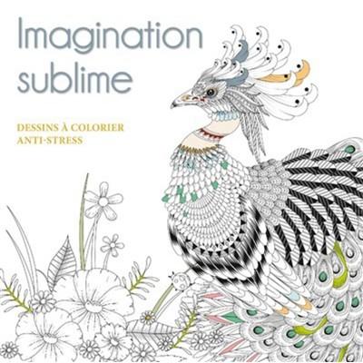 IMAGINATION SUBLIME/DESSINS A COLORIER